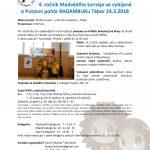 24.3.2018 – 4. ročníku Medvědího turnaje ve vybíjené o pohár RADAMBUKu – Tábor