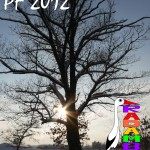 PF RADAMBUK 2012