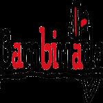 14.3.2013 - 1. Štáb Bamibiriáda 2013 - pozvánka