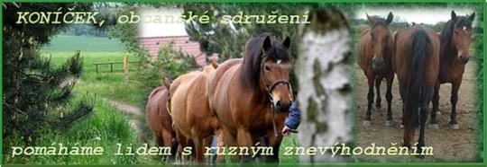KONÍČEK,o.s. - pozvánka na Skřidelský táborák 2013