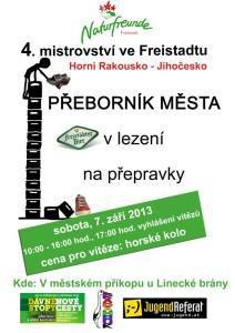 plakat_2013_tschechisch (2)