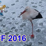 PF 2016 RADAMBUK