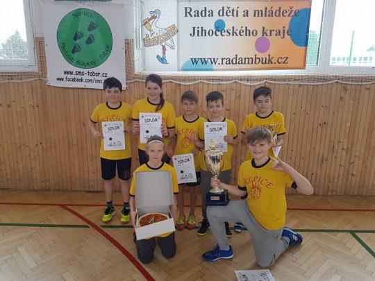 6. ročník Medvědího turnaje ve vybíjené o Putovní pohár RADAMBUKu - Tábor 4. 4. 2020 - odložen