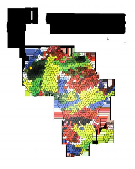 Sbírka brýlí pro Afriku na BAMBIFESTu