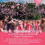 16.6.2018 – AVON Pochod za zdravá prsa v Č. Budějovicích – projekt Mládež kraji