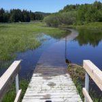 Nápady na výpravy do přírody - kam s dětmi